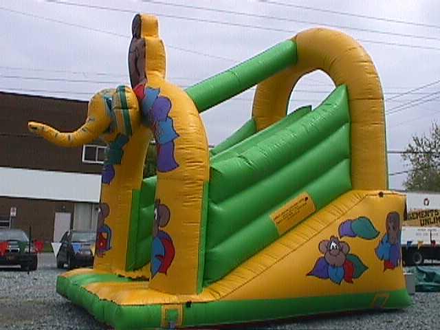Kiddie Tarzan Slide